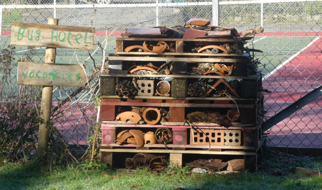 Bug hotel in foreground and tennis court in background.
