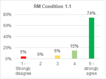 A bar chart showing support for roads and mobility condition 1.1. 74% strongly agree with it. 15% agree. 6% are not sure. 0% disagree. 5% strongly disagree.
